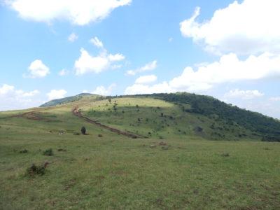 Olorgesailie Pre-Historic Site and Lake Magadi Tour